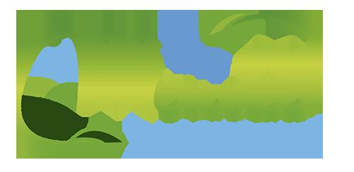 Fray Mendel
