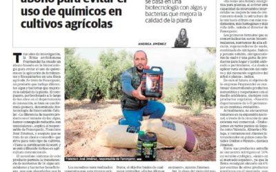 """Diario Sur se hace eco de Fernoganic como un producto """"innovador"""""""